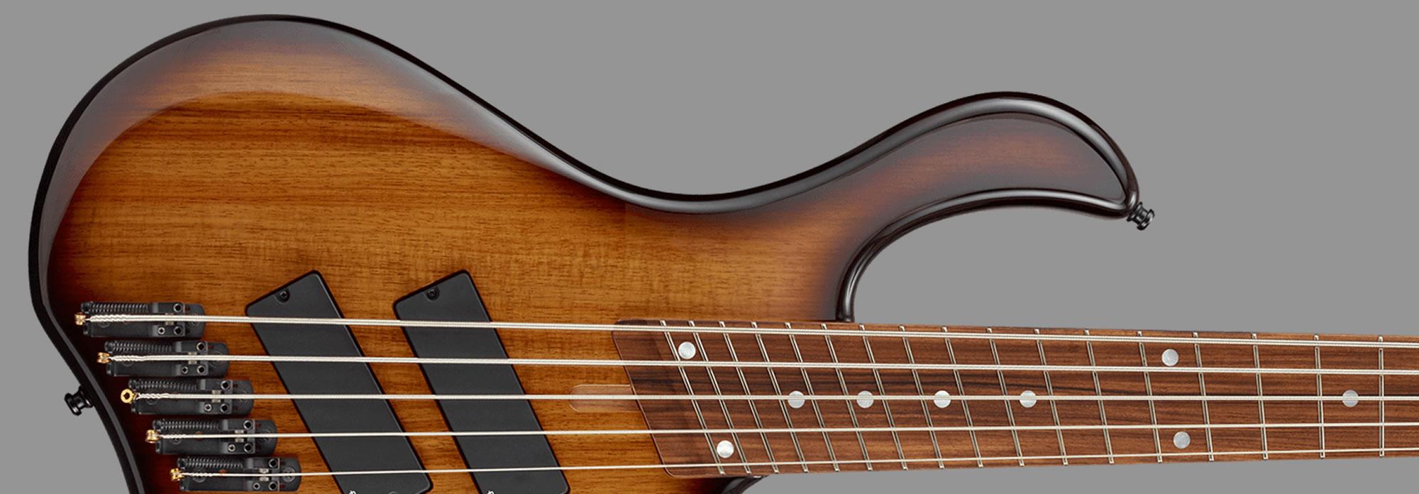 E-II CR-5 MS 2 Tone Sunburst