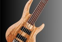 LTD B-205SM Natural Satin