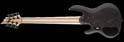 LTD B-206SM See-Thru Black Satin