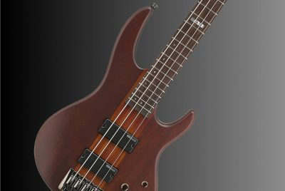 LTD D Series Bass